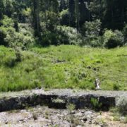Situation der Unkentümpel oberhalb des Geschiebesammlers im Gebiet Zollhaus, Sachseln