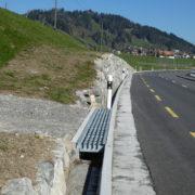 Kantonsstrasse mit bergseitigem Amphibienleitwerk